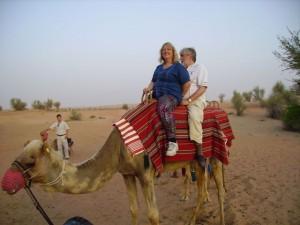 Bashar, the camel