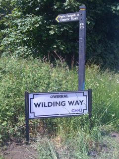 Road Sign - Wilding Way